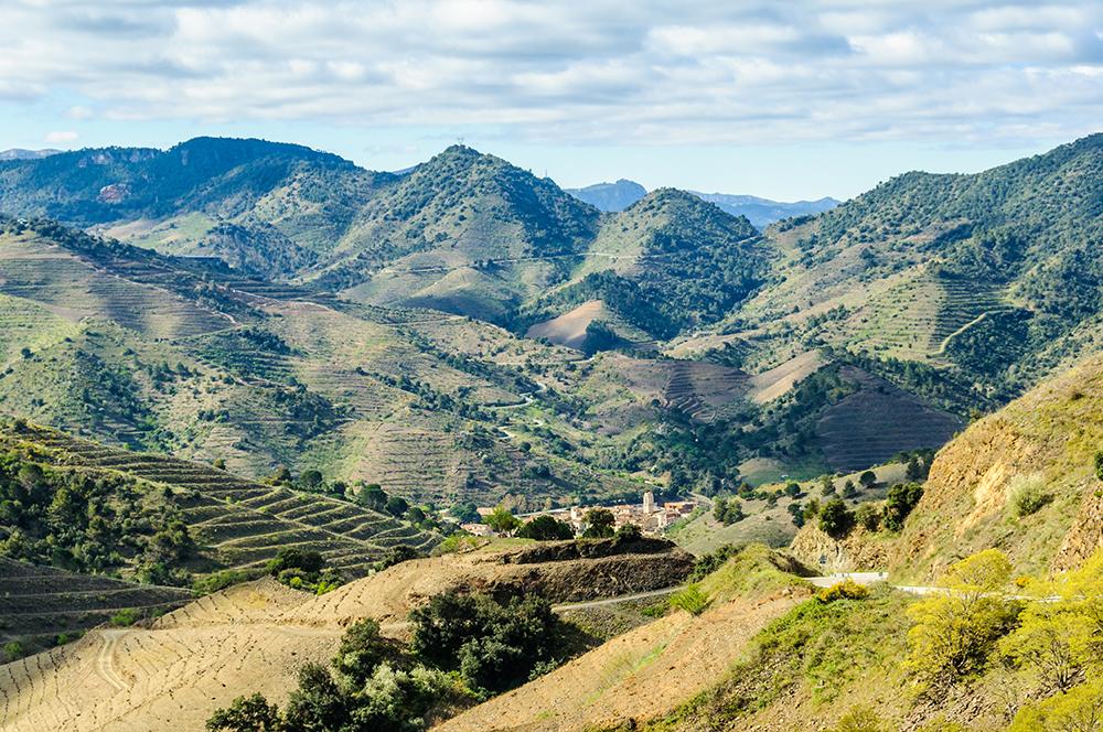 Rural landscape in the Priorat, Spain